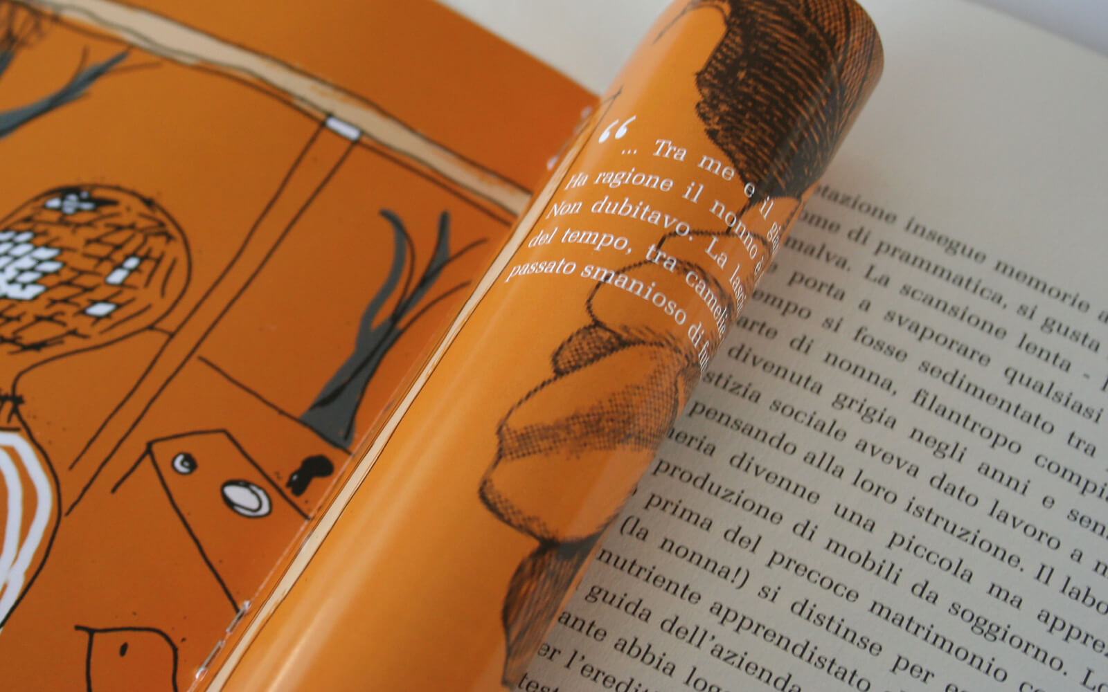 diade studio, dettaglio pagine interne del libro