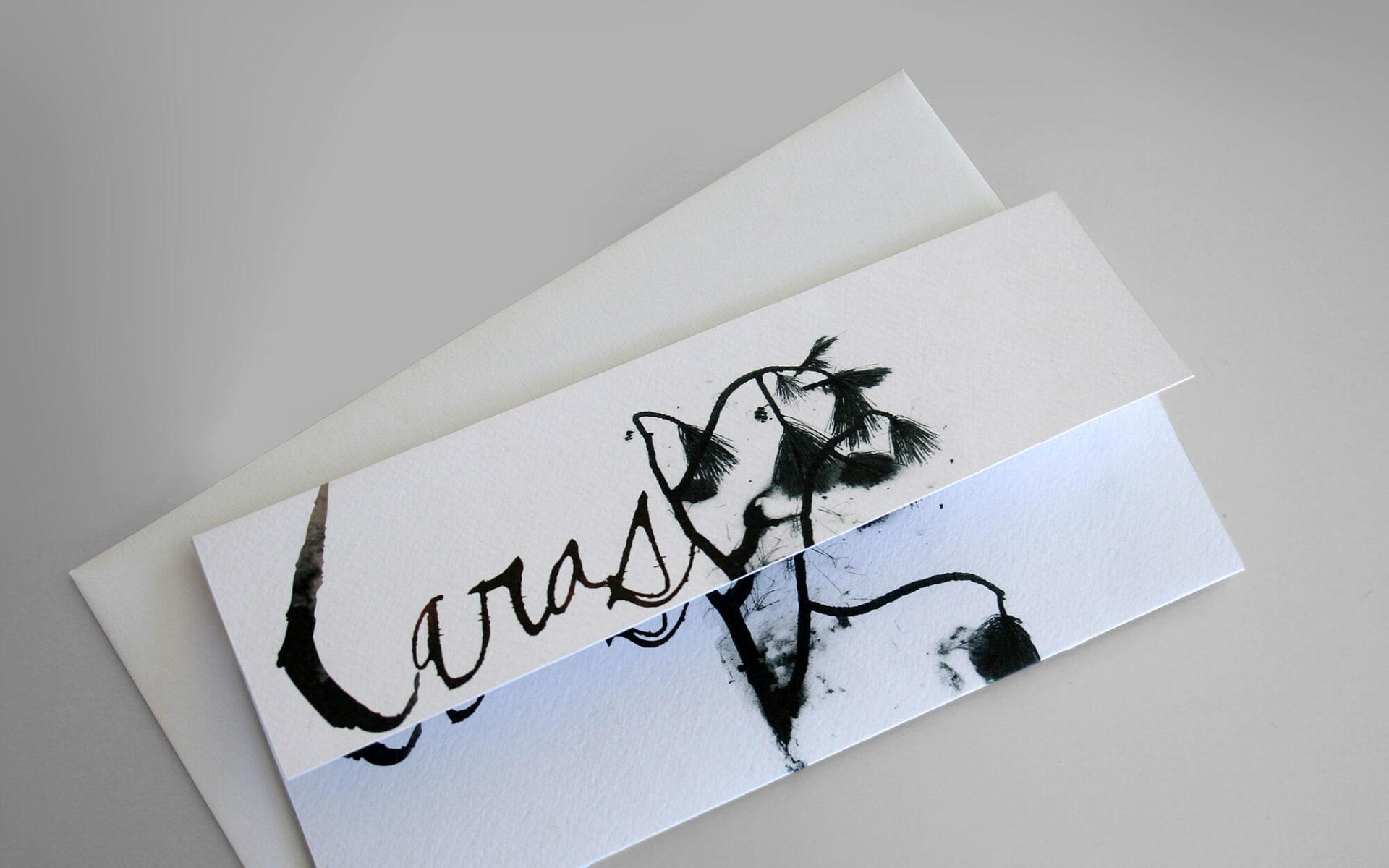 dettaglio invito evento di presentazione cd laras, di Rolando lucchi, progetto grafico diadestudio arco-trento