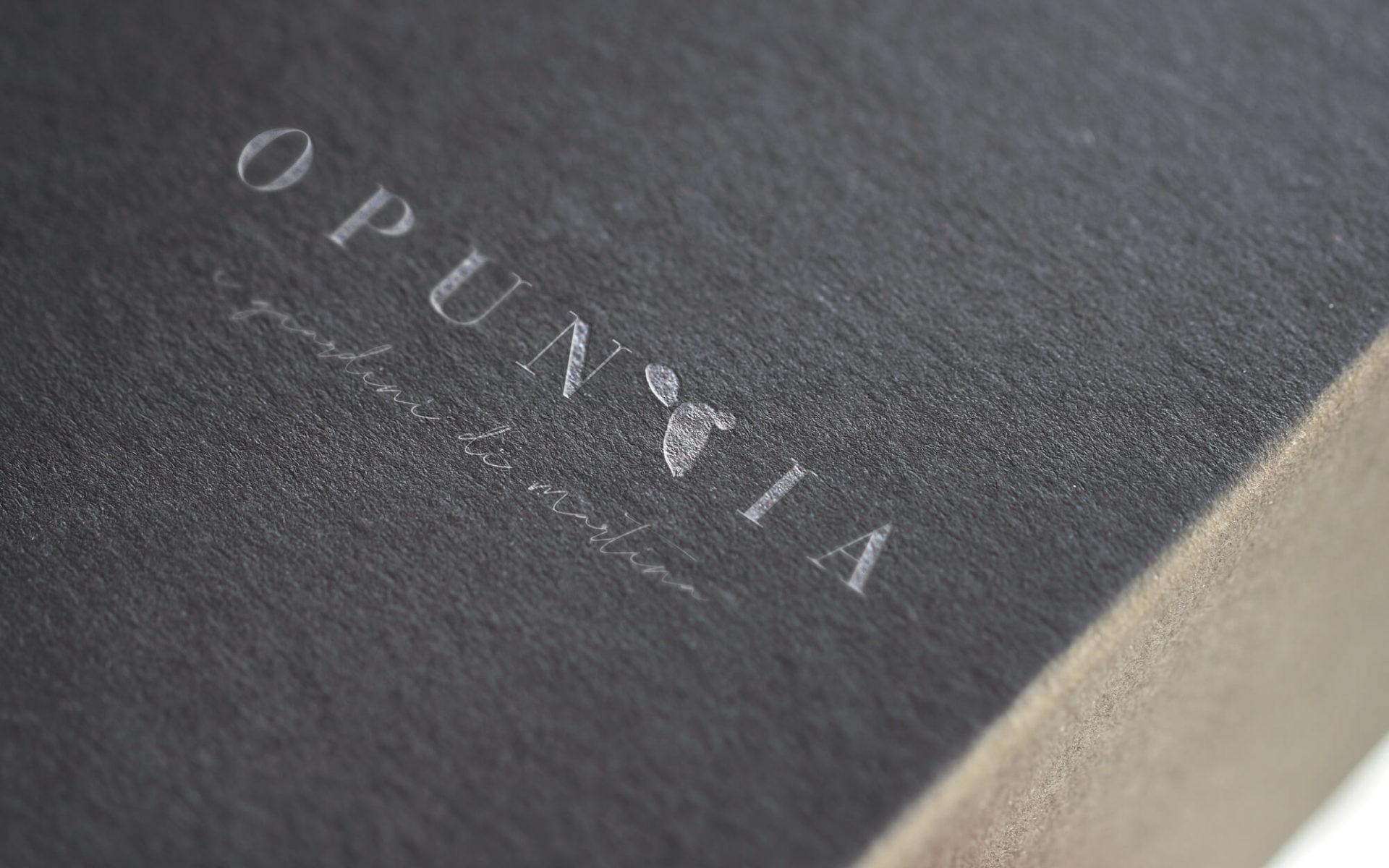 dettaglio stampa bianco offset per cartella portadocumenti opuntia, progetto diadestudio agenzia di comunicazione